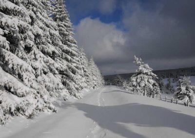 neige-mont-lozere-hotel-restaurant-la-remise